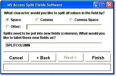 MS Access Split Fields Software