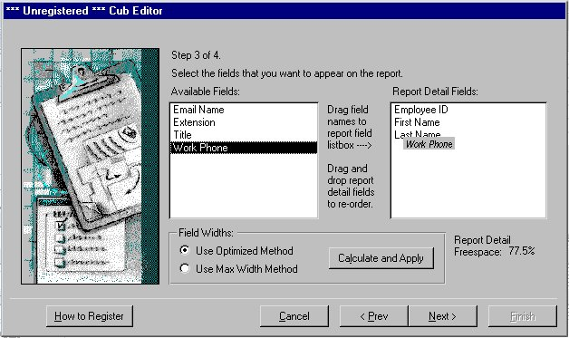 Cub Editor for MS Access