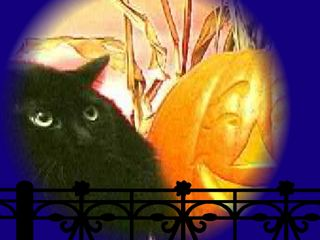 Screechy Cat Halloween Wallpaper