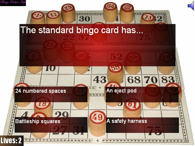 How To Play Standard Bingo Quiz