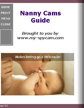 Nanny Cams
