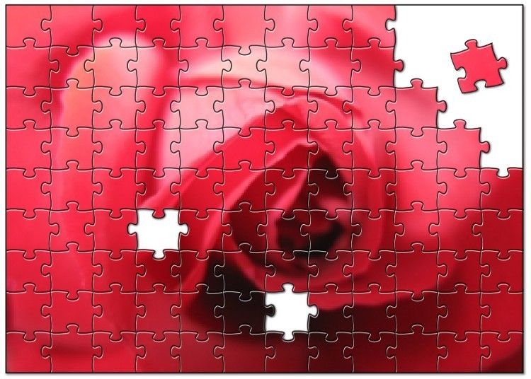 Rose Jigsaw Puzzle
