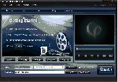 4Easysoft MKV Converter Screenshot