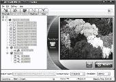 dvdXsoft DVD to iPod Converter Pro Screenshot