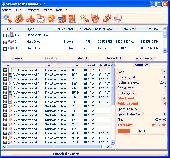 SBMAV Disk Cleaner Lite Screenshot