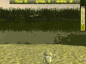 Screenshot of Frog Game Deluxe