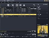 AVCWare FLV to WMV Converter Screenshot