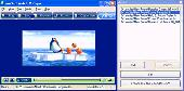 AnvSoft Web FLV Player Screenshot