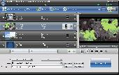 Screenshot of AnyMP4 iPhone Video Converter