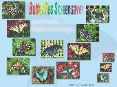 Screenshot of Butterflies Screensaver