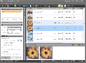 Screenshot of Duplicate Finder 2009 Basic Edition