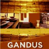 Gandus Portfolio Template Screenshot
