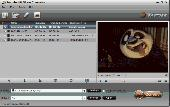 Pavtube HD Video Converter Screenshot