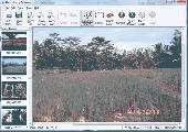 Photo Stamp Remover Screenshot