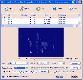 Torrent DVD to WMV Converter Screenshot