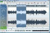 Screenshot of Wavepad Audio Editor