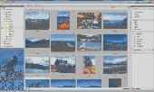 ACDSee Photo Manager 12 Screenshot