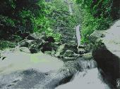 AD Jungle Waterfall - Animated Desktop Wallpaper Screenshot