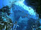 Coral Reef 3D Screensaver Screenshot
