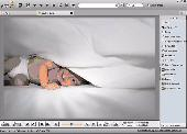 Fly Free Photo Editing & Viewer Screenshot