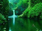 Green Waterfalls Screenshot