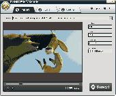 iPixSoft SWF to AVI Converter Screenshot