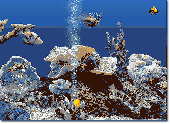Marine Aquarium 3 Screenshot