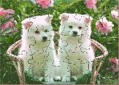 OSC Cute Puppies Puzzle Screenshot