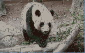 PH Panda Jigsaw Puzzle Screenshot