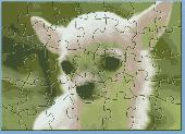 STR Cute Chihuahua Puzzle Screenshot