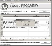 XLS Excel Recovery Screenshot