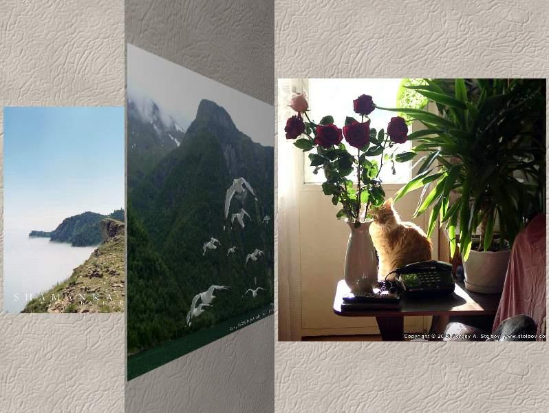 3D Photo Album Screensaver