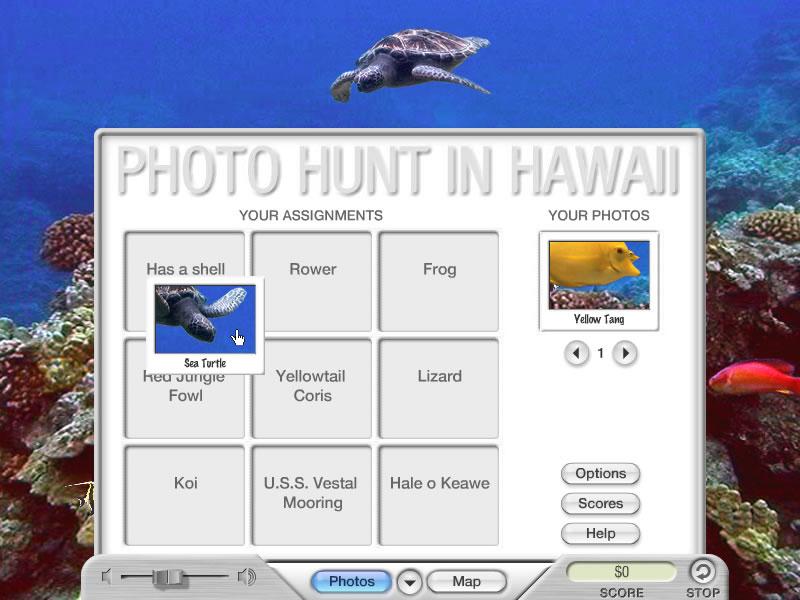 Photo Hunt in Hawaii
