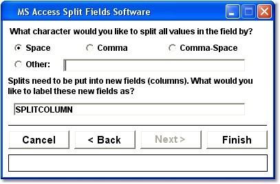 MS Access Split Fields Software