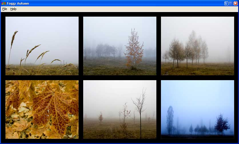 Bizimg Foggy Autumn