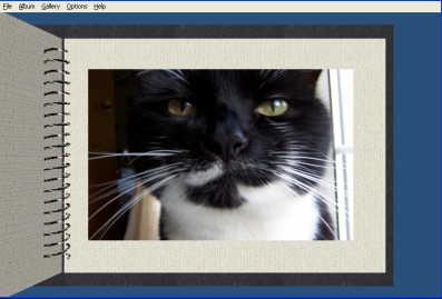 PajerPhoto Album 3D