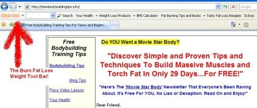 Burn Fat Lose Weight Toolbar