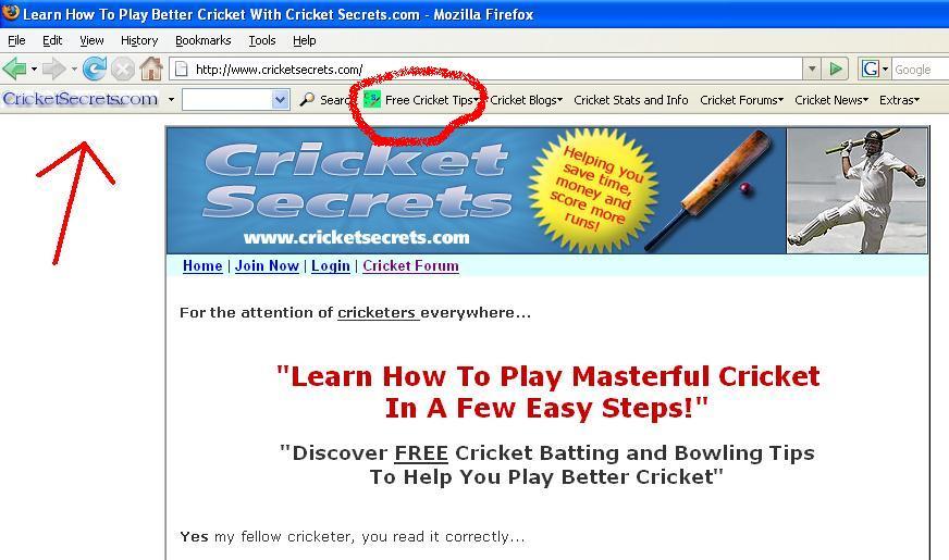 How To Play Cricket: CricketSecrets.com Tool Bar