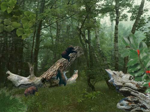 AD Three Bears - Animated Desktop Wallpaper