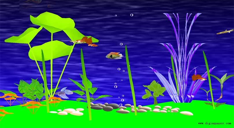 Freshwater Fish Aquarium Screen Saver