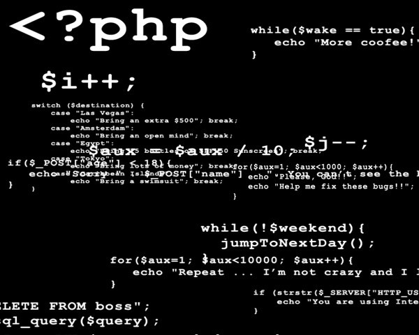 PHP Programmers Brain