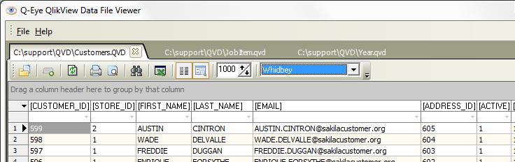 Q-Eye QVD/QVX files Viewer