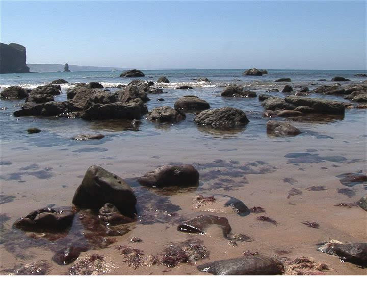 Selten Rock Pools Wallpaper