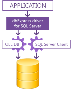 dbExpress driver for SQL Server