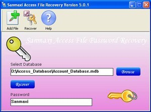 MS Access 95/97/2000 Password Recovery Tool