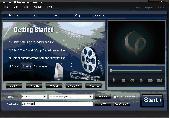 4Easysoft Wii Video Converter Screenshot