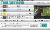 4Videosoft Mac Video Converter Platinum Screenshot