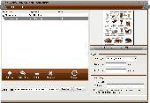 Screenshot of 4Videosoft PDF to Flash Converter