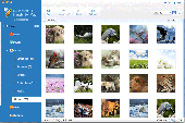 4Videosoft iOS Transfer for Mac Screenshot