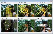 VisionLab VC++ Screenshot